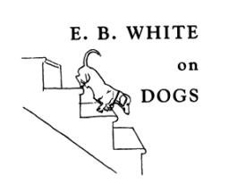 EB WHITE dog on stairs