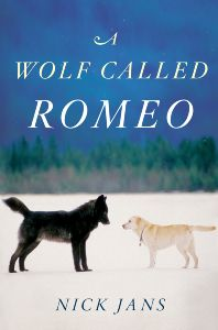 romeo wolf COVER