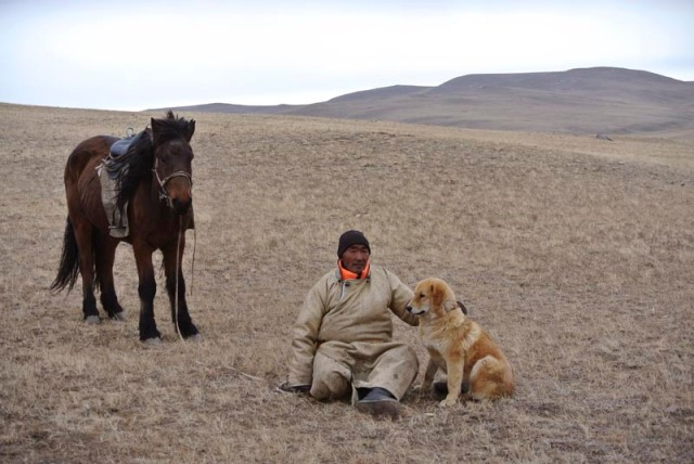In this photo taken Nov. 13, 2015, Chulunjav Bayarsaikhan poses for photos with Hassar, a shaggy, 11-month-old bankhar puppy, in Tuv Province, Mongolia. As years of overgrazing increasingly push Mongolian nomads into the territory of their oldest foes - snow leopards and wolves - a group of researchers and herders are trying to reinstate the bankhar, a close relative of the Tibetan mastiff, to its historic place beside their masters. The dog is native to Mongolia but nearly disappeared over the course of mass urbanization drives during the Soviet era. (AP Photo/Grace Brown)